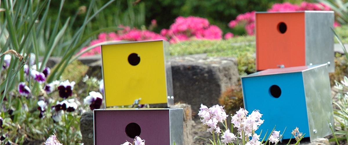Vogelhuisjes box in kleuren